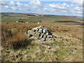 NY9594 : Cairn on Landshot Hill by Pete Saunders