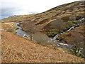 NS3162 : Calder Glen, Muirshiel by wfmillar