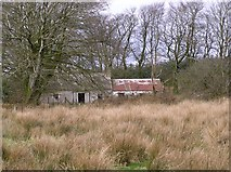 H6160 : Abandoned cottage, Tullyglush by Kenneth  Allen