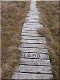NT7706 : Boardwalk on Ogre Hill by Oliver Dixon