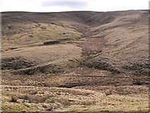 NT7908 : Looking across Coquetdale by Oliver Dixon