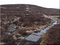 NT8214 : The Pennine Way at Mozie Law by Oliver Dixon