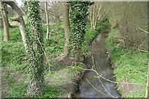 SP2865 : St John's Brook, Priory Park, Warwick by Robin Stott