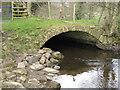 SK2475 : Small Bridge by Tony Bacon