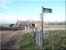 TQ9963 : Footpaths at Luddenham Court farm by pam fray
