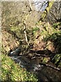 NS3779 : Stream flowing towards Poachy Glen by Lairich Rig