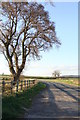 ST4893 : Early Spring on the Shirenewton Road - looking north by Ruth Sharville