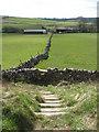 SK1463 : Footpath off Trail near Parsley Hay by Alan Heardman