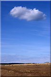 NT6578 : Dunes and cloud, John Muir Country Park by Mike Pennington