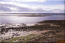 NU1341 : Foreshore, Holy Island, Northumberland by Christine Matthews