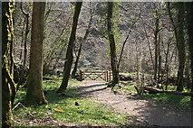 SX4970 : Whitchurch: Drake's Trail 3 by Martin Bodman