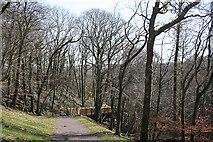 SX4970 : Whitchurch: Drake's Trail 4 by Martin Bodman