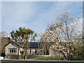 T0223 : House with magnolia in bloom, Wexford by David Hawgood