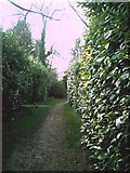 SP2704 : Path to Alvescot village hall by andrew auger