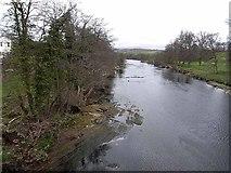 NY5046 : River Eden from Armathwaite Bridge by Oliver Dixon