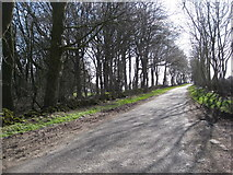 SK1763 : Lane near junction with Long Rake by Alan Heardman