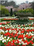 TQ2882 : Regent's Park by Stephen McKay