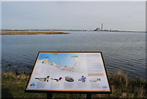TQ8068 : Eastern end of an island in the Copperhouse Marshes by N Chadwick