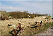 TQ8068 : Commemorative Benches, Sharp's Green Bay by N Chadwick