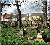 TF5002 : St Peter's Church - churchyard by Evelyn Simak