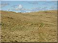 SN7768 : Quad-bike track above Llethr Brith by Nigel Brown