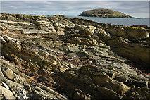 SX2551 : Looe Island by Philip Halling