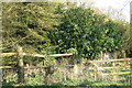 TQ4838 : Remains of Oast House near Perryhill Farmhouse, Hartfield, East Sussex by Oast House Archive
