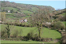 SY1988 : Branscombe: towards Manor Mill by Martin Bodman
