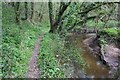 SJ4444 : Footpath along Wych Brook by Dave Dunford