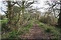 SJ4547 : Bridleway near Chorlton Lane by Dave Dunford