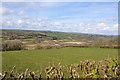 SN4814 : Gwendraeth Fach valley east of Llangyndeyrn by Mick Lobb
