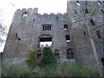 SO5074 : Ludlow Castle by PAUL FARMER