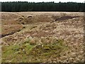 NS4279 : Old spoil mound by Lairich Rig