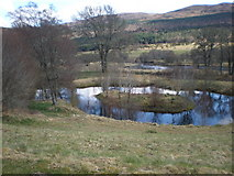 NH3214 : Pond at Dundreggan Lodge near A887 by Sarah McGuire