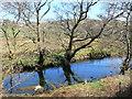 SH5259 : Afon Gwyrfai near Waunfawr by Eirian Evans