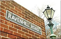 J3573 : Ravenhill Road sign, Belfast (1) by Albert Bridge