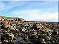NZ4161 : Whitburn Rocks by Roger Smith