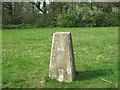 TQ5459 : Triangulation Pillar near Otford Mount by David Anstiss
