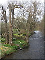 SD2986 : River Crake above Lowick bridge by Andrew Hill