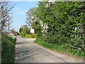 TG1423 : View north along Perrys Lane by Evelyn Simak