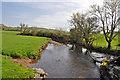 SN4211 : Upstream of the Gwendraeth Fach south east of Llandyfaelog by Mick Lobb