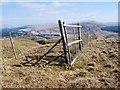NN0717 : Deer fence by Patrick Mackie