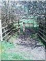 SN5255 : Gat fochyn (Ddwyrain/Gorllewin) / Kissing Gate (East/West) by G Williams