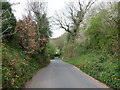 SS9514 : Bolham : Bolham Lane by Lewis Clarke