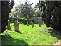 TF6303 : St Mary's - churchyard by Evelyn Simak