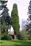 SU5598 : Nuneham Courtenay Arboretum by Steve Daniels