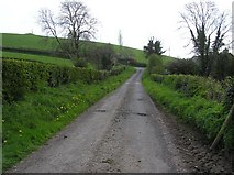H6056 : Ballynasaggart Road by Kenneth  Allen