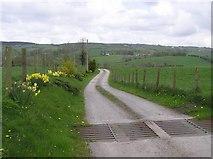 H5956 : Lane, Keady by Kenneth  Allen