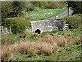 NY9875 : Bridge at Hallington by Joan Sykes