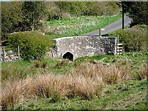 NY9875 : Bridge at Hallington by Joan Sykes